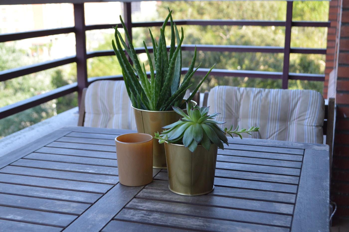 winter-of-67-mesa-sillas-balcon.JPG